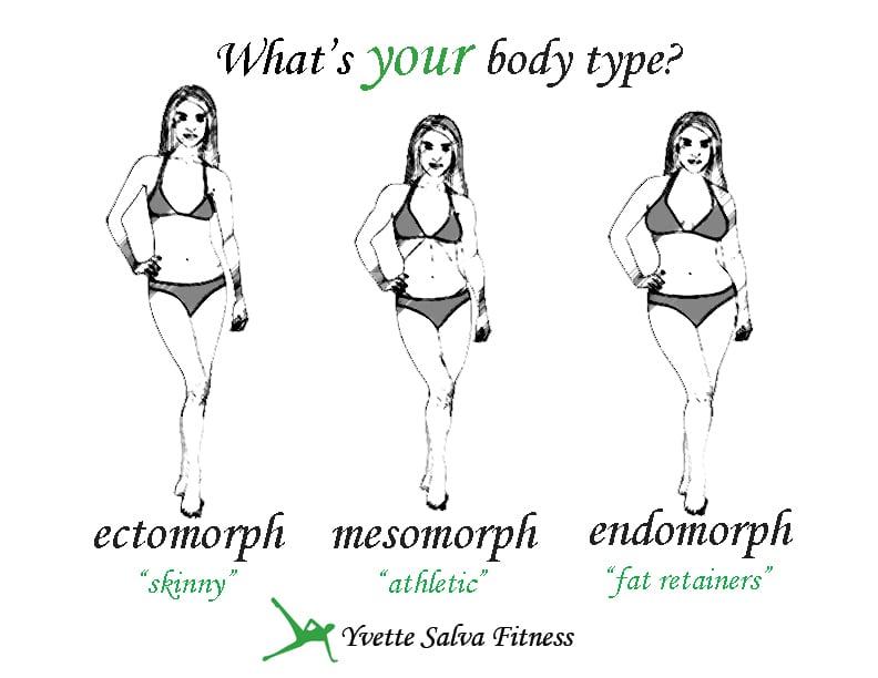 Endomorph Diet Plan Female Related Keywords - Endomorph ...